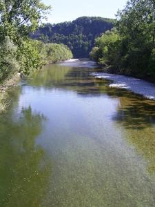 Fluss Aare (960x1280)