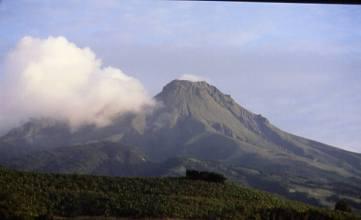 Martinique1993volcan